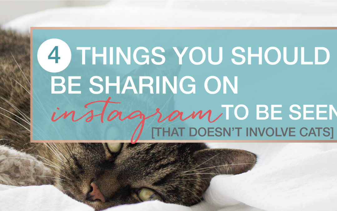 4 Things you should be sharing on Instagram – that doesn't involve cats!
