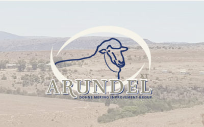 Freshly Baked | Branding for Arundel – a sheep farm in Stutterheim